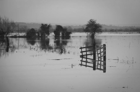 Flooded Somerset Levels - Mark Robinson (Flickr Creative Commons)