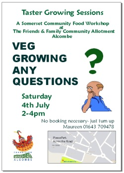 transition-minehead-veg-growing-any-questions